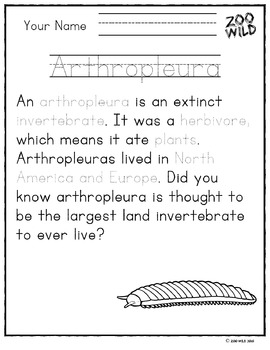 Arthropleura -- 10 Resources -- Coloring Pages, Reading & Activities