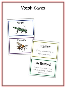 Arthropod Animal Research Project 12 Types, Vocab Cards, Packet, Book  + More!