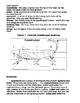 Arthropod Coloring Worksheet