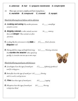 Arthropod Test and Key