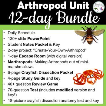 Arthropod Unit Bundle