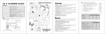 Arthropod (insects-arachnids-crustaceans) Review Worksheet for Biology / Zoology
