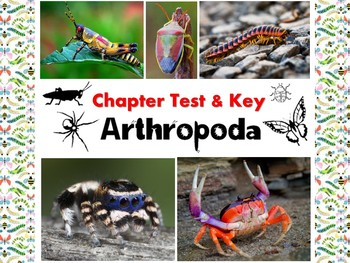 Arthropod (insects, arachnids, crustaceans) Test for Biology & Zoology
