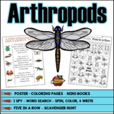 Arthropods Activity Pages