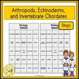 Arthropods, Echinoderms, and Invertebrate Chordates BINGO