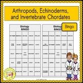 Arthropods, Echinoderms, and Invertebrate Chordates BINGO