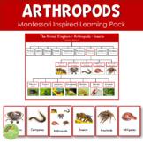 Arthropods - Insects - Crustaceans - Arachnids Montessori