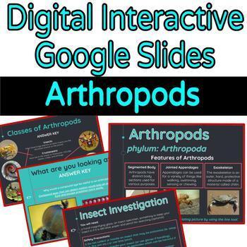 Arthropods Interactive Digital Google Slides