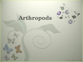 Arthropods PowerPoint Presentation Lesson Plan