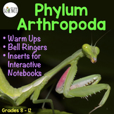 Arthropods Interactive Notebook Pages Warm Up Bell ringers