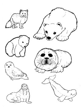 Artic Animal Commercial Clipart in Black and White