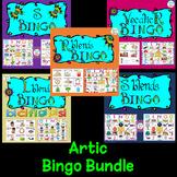 Artic Bingo Bundle: S and S Blends, R Blends, L Blends, and Vocalic R