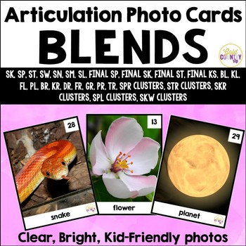 Artic Pix - The Blends