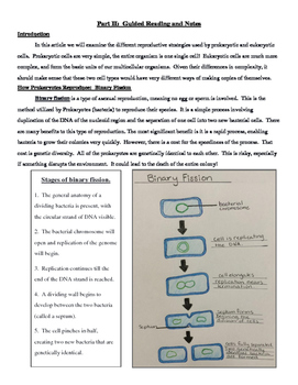 Article, Guided Reading Notes & Exit Slips - Mitosis vs. Binary Fission