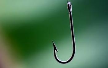 Article: Hook 'Em