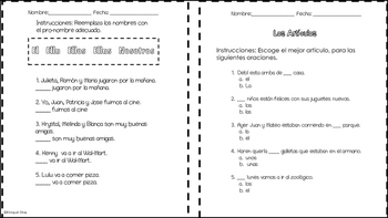 Article Noun Agreement