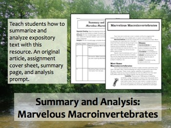 Summary and Analysis: Macroinvertebrates