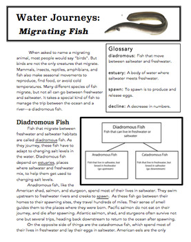Summary and Analysis: Migrating Fish
