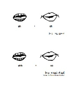 Articulating Diphthong Vowels - Segmented Visuals