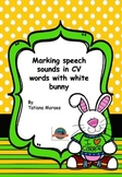 Articulation - CV words