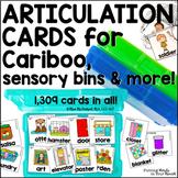 Articulation Cards for Cariboo, Sensory Bins & More!