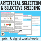 Artificial Selection & Selective Breeding - Guided Reading
