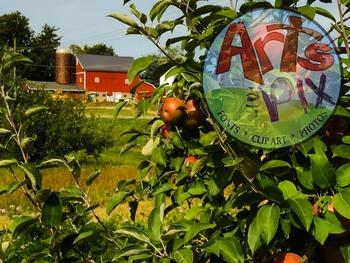 "Stock Photos - ""Apple Orchard"" - BUNDLE - Arts & Pix"