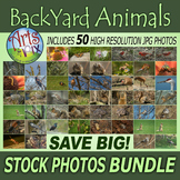 "Stock Photos - ""Back Yard Animals 2017"" - photo pack BUNDL"
