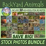 "Stock Photos - ""Back Yard Animals 2017"" - photo pack BUNDL"