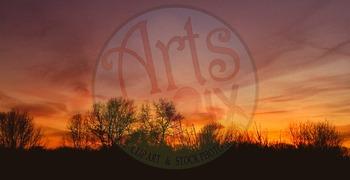Photographs  - Sunset