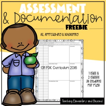 Freebie: At, Approaching & Developing Assessment/Documenta