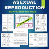 Asexual Reproduction (Budding, Fission, Cloning, etc)- Sor