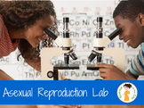 Asexual Reproduction Lab