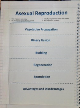 Asexual Reproduction Shutter Fold Notes