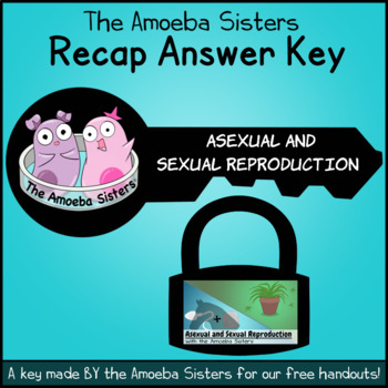 Amoebas asexual reproduction worksheet