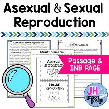 Asexual/sexual worksheet pdf