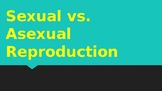 Asexual vs. Sexual Reproduction: Presentation and Notes