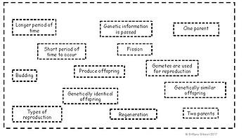 Asexual vs Sexual Reproduction Venn Diagram