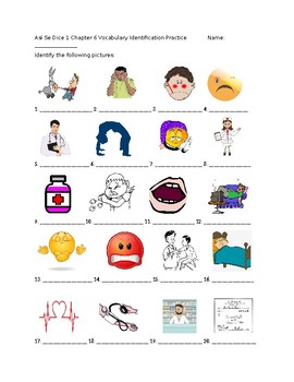 Así Se Dice 1 Chapter 6 Vocabulary Identification Practice/Quiz