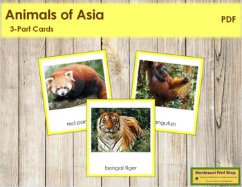 Asian Animals: 3-Part Cards (color borders)