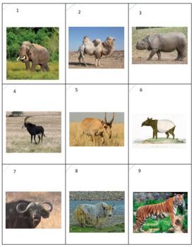 Asian Animals Dominoeds