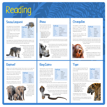 Asian Animals (Puzzes & Fun Stuff)