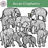 Asian Elephants Clipart Set