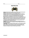 Asian Shore Crab - Invasive species - Article Questions Vocab activities