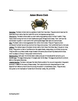 Asian Shore Crab - Invasive species - Article Questions Vocab activities