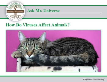 (Agriculture) Ask Dr Universe: How do Viruses Affect Animals?