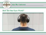 Ask Dr Universe: How do our ears work?