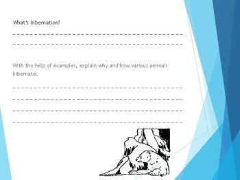 Ask Dr Universe: Why do animals hibernate? Reading Guide