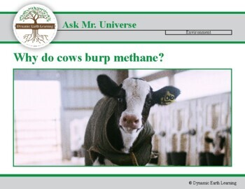 (Agriculture) Ask Dr Universe: Why do cows burp methane? Reading Guide
