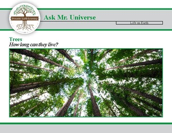 Ask Dr Universe: How long can Trees live?